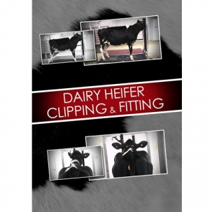 Dairy Heifer Clipping & Fitting DVD -  image 1