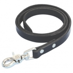 Sullivan's Leather Nose Lead