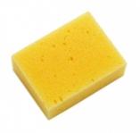 Lincoln Large Sponge
