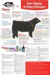 Sullivan's Steer Clipping & Fitting Techniques Poster
